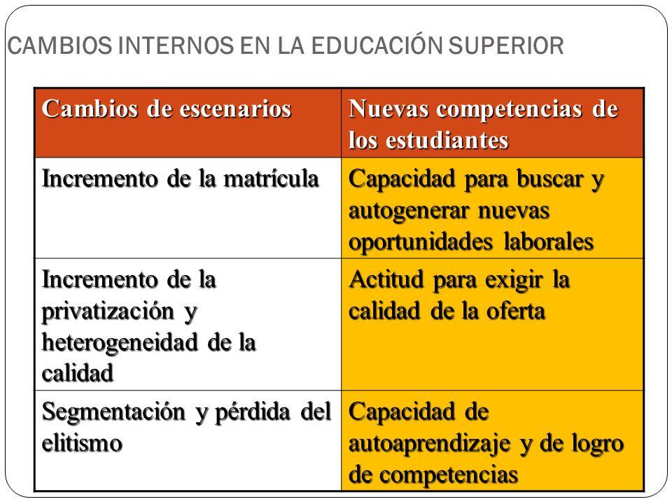 CAMBIOS INTERNOS EN LA EDUCACIÓN SUPERIOR Cambios de escenarios Nuevas competencias de los estudiantes Incremento de la matrícula Capacidad para busca