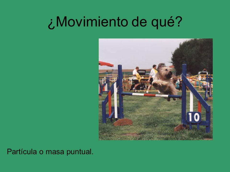 ¿Movimiento de qué? Partícula o masa puntual.