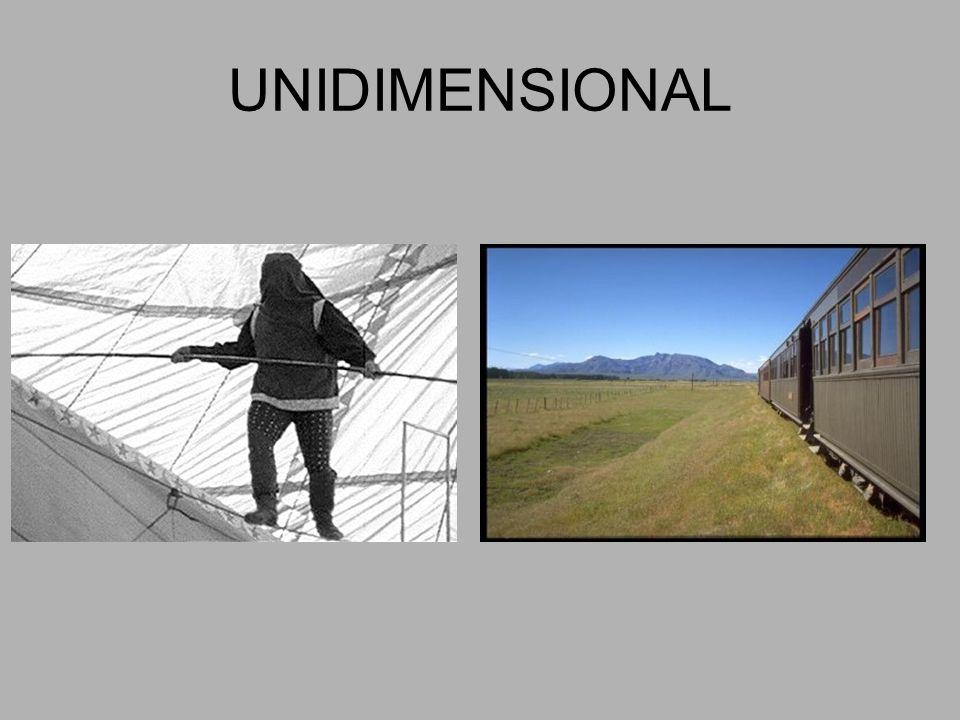UNIDIMENSIONAL