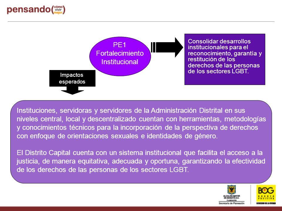 PE1 Fortalecimiento Institucional Consolidar desarrollos institucionales para el reconocimiento, garantía y restitución de los derechos de las persona