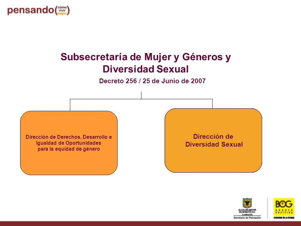 Subsecretaría de Mujer y Géneros y Diversidad Sexual Dirección de Derechos, Desarrollo e Igualdad de Oportunidades para la equidad de género Dirección