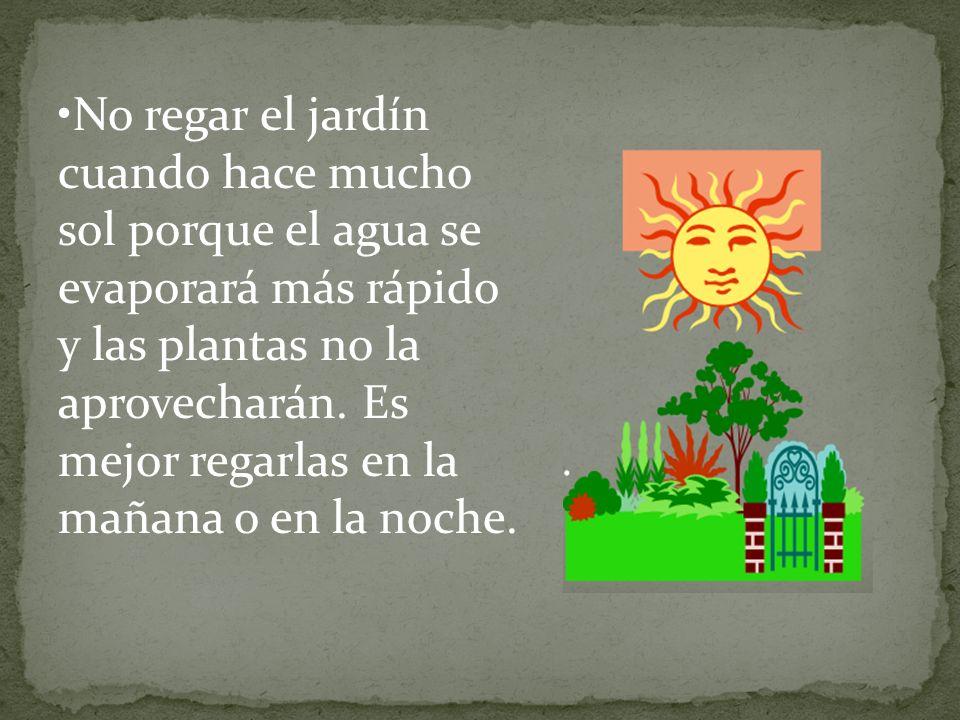 No regar el jardín cuando hace mucho sol porque el agua se evaporará más rápido y las plantas no la aprovecharán. Es mejor regarlas en la mañana o en
