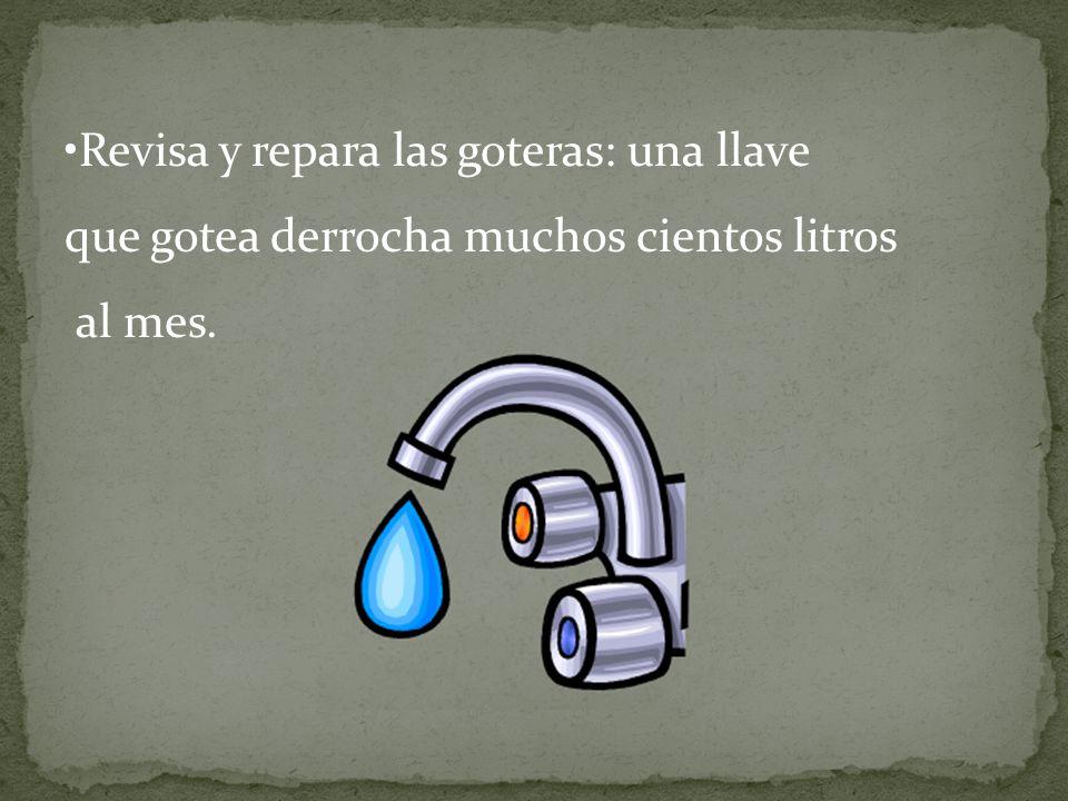 Revisa y repara las goteras: una llave que gotea derrocha muchos cientos litros al mes.