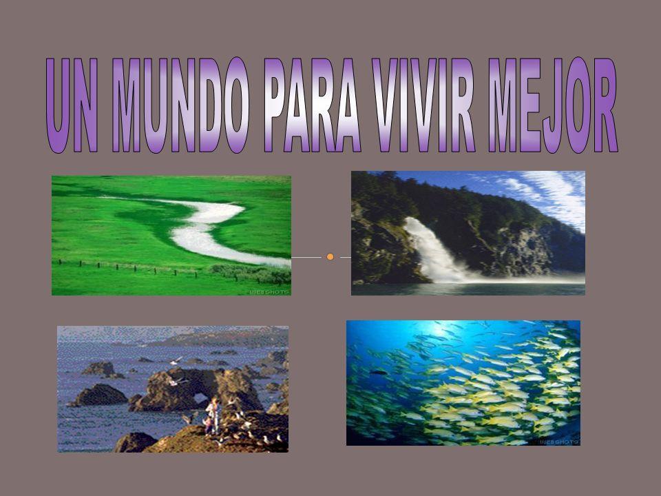 Nuestro planeta está conformado por 4 elementos: Agua Su existencia hace posible la de todos lo seres vivos que habitan en el planeta.