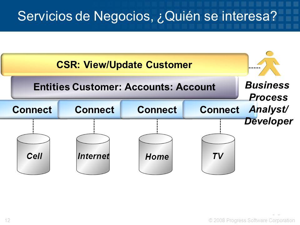 © 2008 Progress Software Corporation12 Servicios de Negocios, ¿Quién se interesa? Entities Customer: Accounts: Account CSR: View/Update Customer Cell