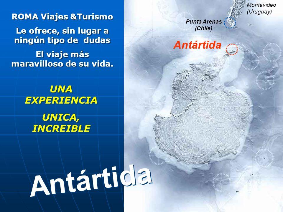Punta Arenas (Chile) Montevideo (Uruguay) Antártida ROMA Viajes &Turismo Le ofrece, sin lugar a ningún tipo de dudas El viaje más maravilloso de su vida.