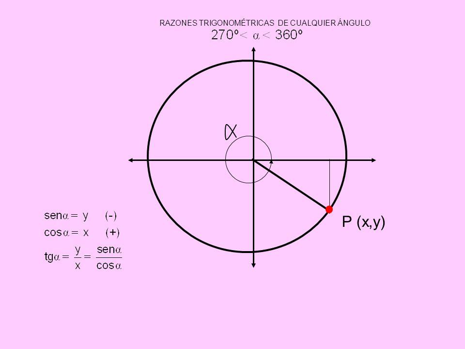RAZONES TRIGONOMÉTRICAS DE CUALQUIER ÁNGULO P (x,y)