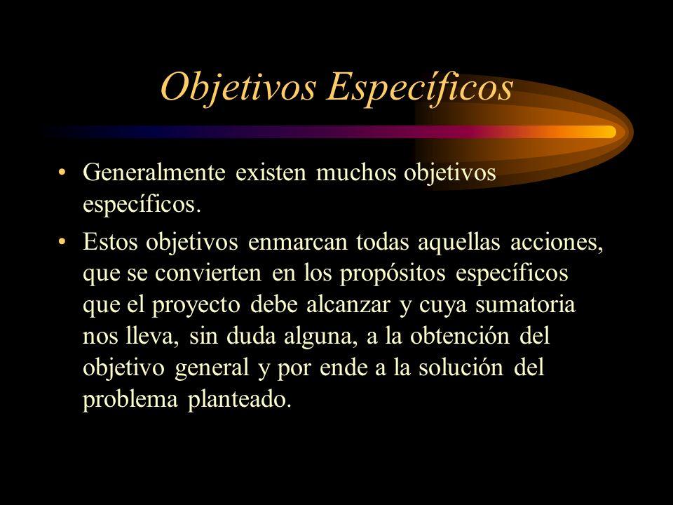 Objetivos Específicos Generalmente existen muchos objetivos específicos. Estos objetivos enmarcan todas aquellas acciones, que se convierten en los pr