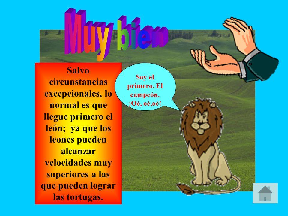 Salvo circunstancias excepcionales, lo normal es que llegue antes a la meta el león; ya que los leones pueden alcanzar velocidades muy superiores a la
