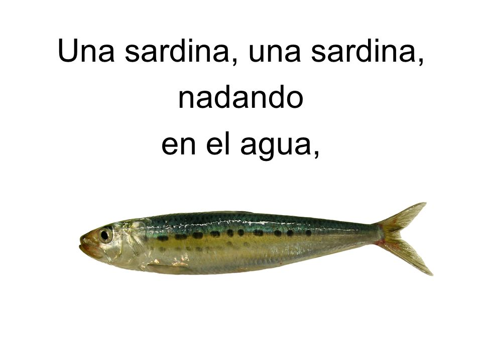 Una sardina, una sardina, ¡Glup, Glup, Glup! ¡Oh, no! Fue comida por …