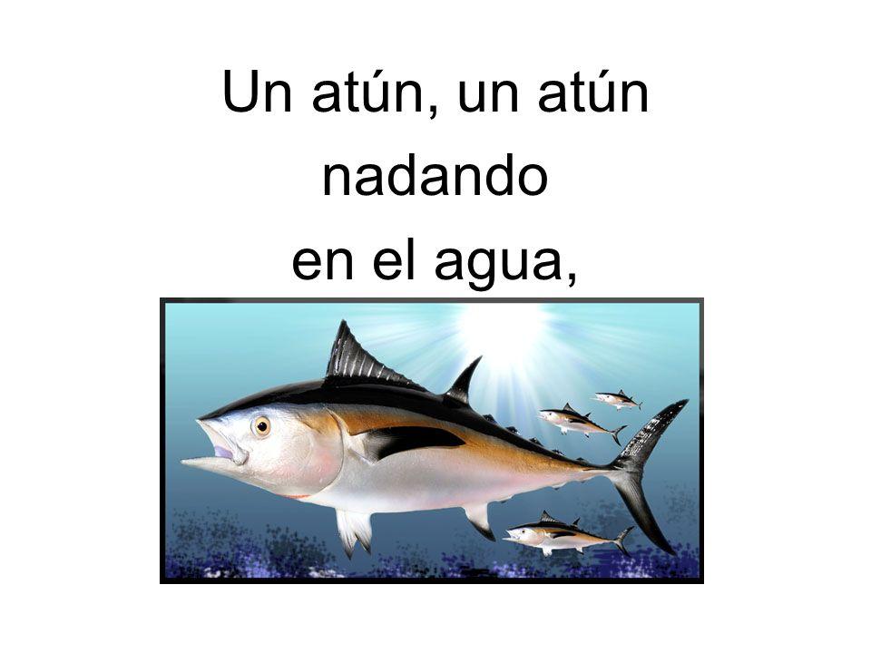 Un atún, un atún nadando en el agua,