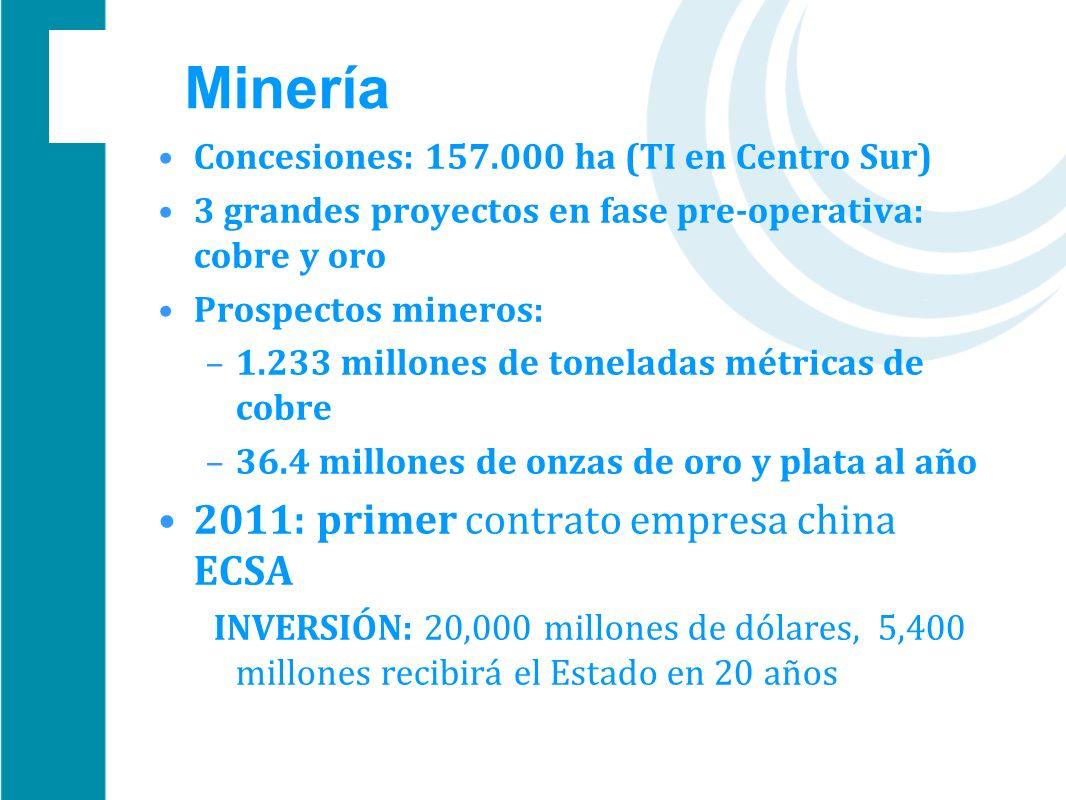 Minería Concesiones: 157.000 ha (TI en Centro Sur) 3 grandes proyectos en fase pre-operativa: cobre y oro Prospectos mineros: –1.233 millones de tonel