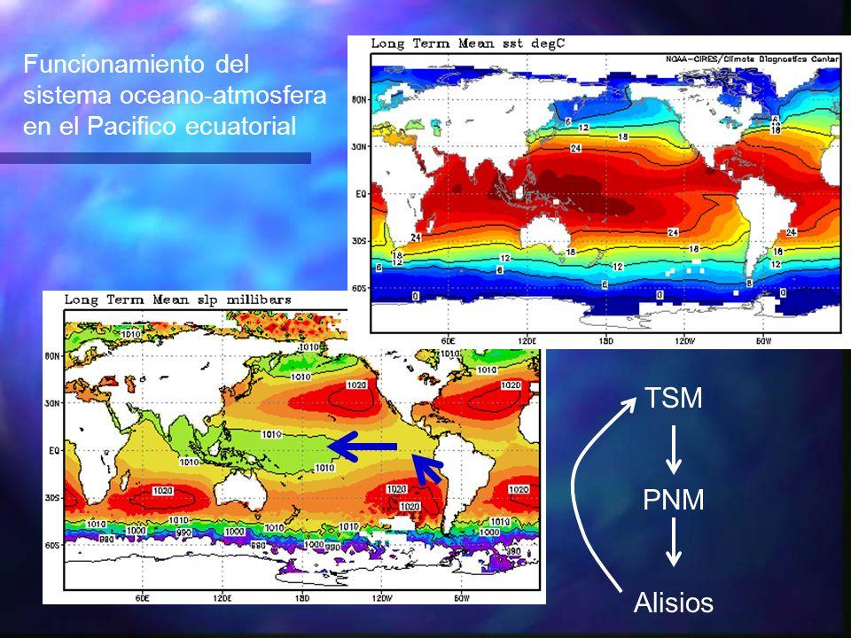 TSM PNM Alisios Funcionamiento del sistema oceano-atmosfera en el Pacifico ecuatorial