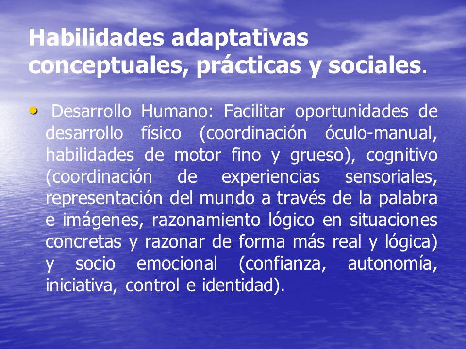 Habilidades adaptativas conceptuales, prácticas y sociales. Desarrollo Humano: Facilitar oportunidades de desarrollo físico (coordinación óculo-manual