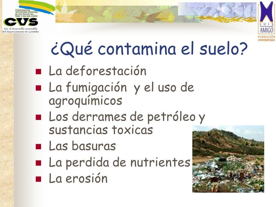 ¿Qué contamina el suelo? La deforestación La fumigación y el uso de agroquímicos Los derrames de petróleo y sustancias toxicas Las basuras La perdida