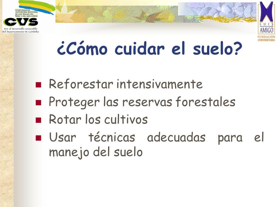 ¿Cómo cuidar el suelo? Reforestar intensivamente Proteger las reservas forestales Rotar los cultivos Usar técnicas adecuadas para el manejo del suelo