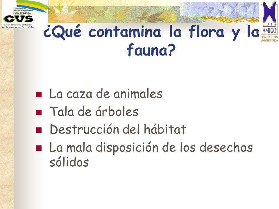¿Qué contamina la flora y la fauna? La caza de animales Tala de árboles Destrucción del hábitat La mala disposición de los desechos sólidos