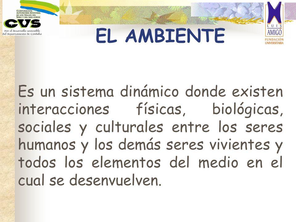 EL AMBIENTE Es un sistema dinámico donde existen interacciones físicas, biológicas, sociales y culturales entre los seres humanos y los demás seres vi
