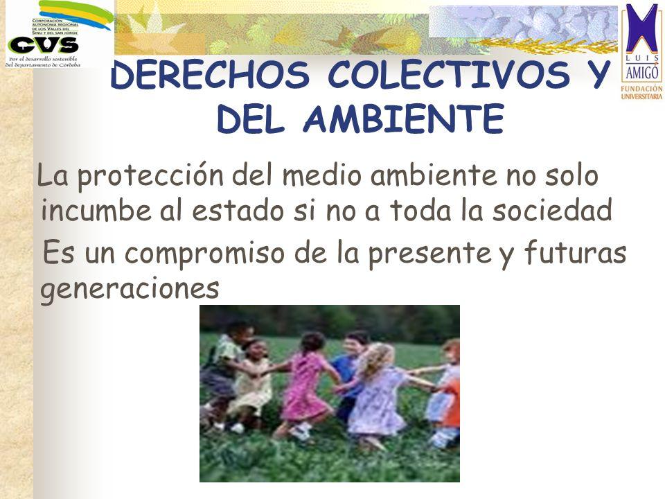 DERECHOS COLECTIVOS Y DEL AMBIENTE La protección del medio ambiente no solo incumbe al estado si no a toda la sociedad Es un compromiso de la presente