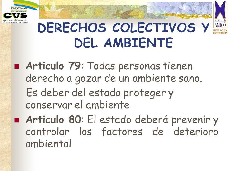 DERECHOS COLECTIVOS Y DEL AMBIENTE Articulo 79: Todas personas tienen derecho a gozar de un ambiente sano. Es deber del estado proteger y conservar el