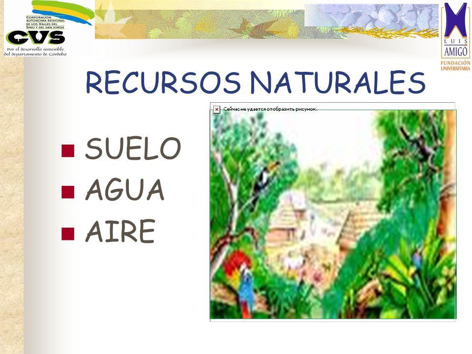 RECURSOS NATURALES SUELO AGUA AIRE
