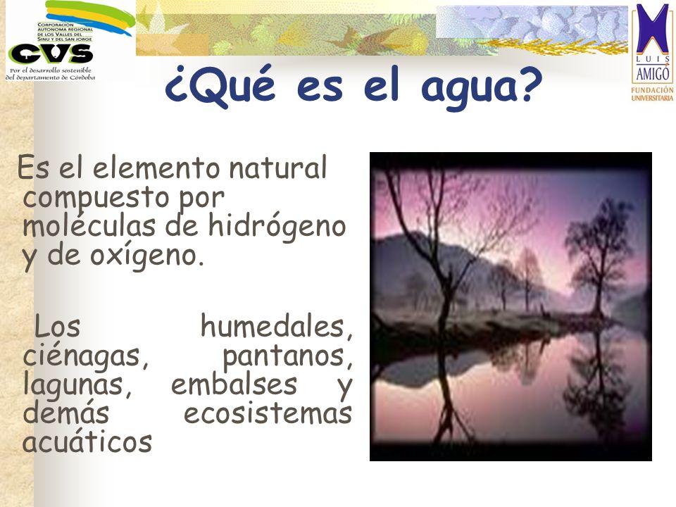¿Qué es el agua? Es el elemento natural compuesto por moléculas de hidrógeno y de oxígeno. Los humedales, ciénagas, pantanos, lagunas, embalses y demá