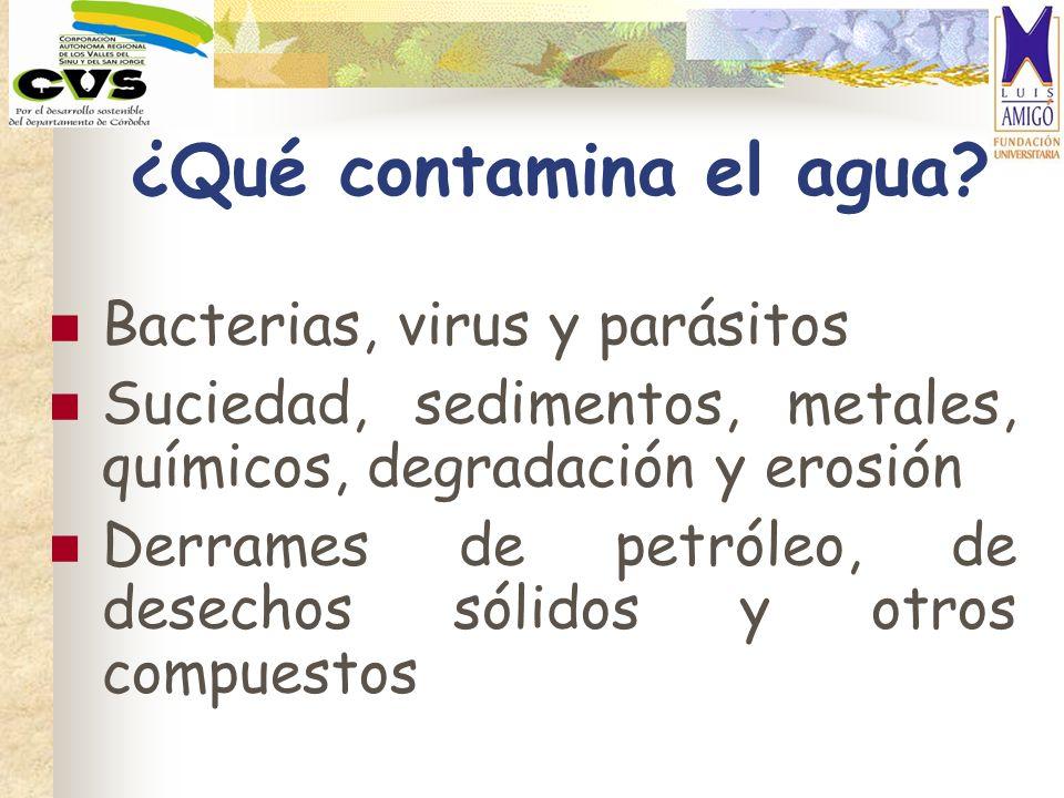 ¿Qué contamina el agua? Bacterias, virus y parásitos Suciedad, sedimentos, metales, químicos, degradación y erosión Derrames de petróleo, de desechos