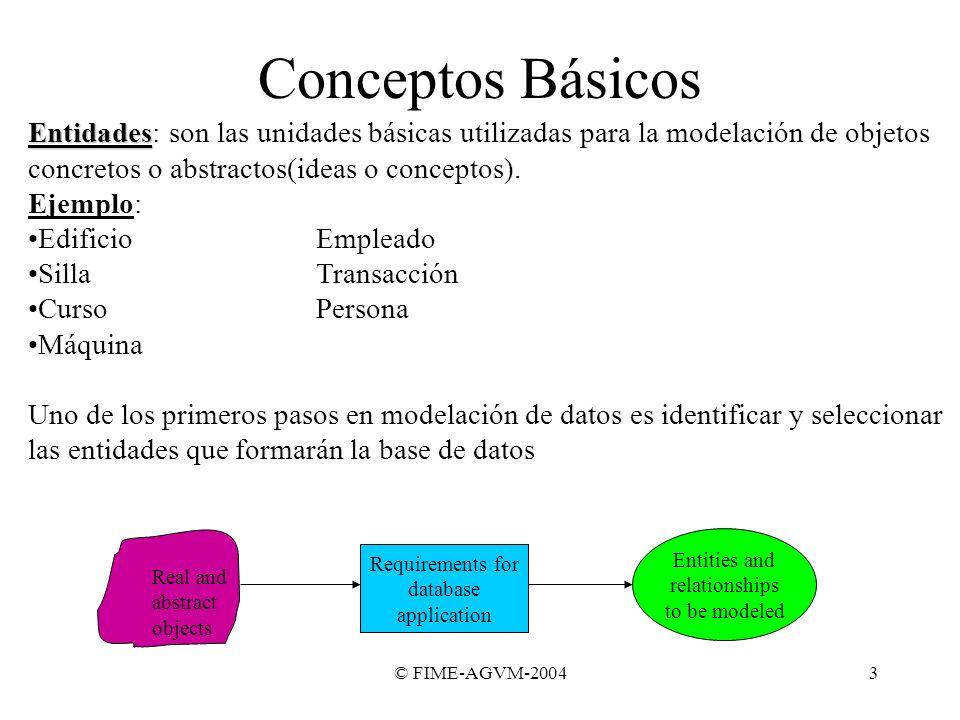 © FIME-AGVM-20043 Conceptos Básicos Entidades Entidades: son las unidades básicas utilizadas para la modelación de objetos concretos o abstractos(idea