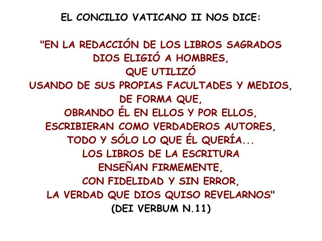 EL CONCILIO VATICANO II NOS DICE: