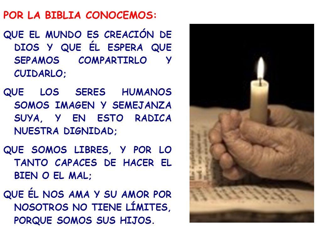 POR LA BIBLIA CONOCEMOS: QUE EL MUNDO ES CREACIÓN DE DIOS Y QUE ÉL ESPERA QUE SEPAMOS COMPARTIRLO Y CUIDARLO; QUE LOS SERES HUMANOS SOMOS IMAGEN Y SEM