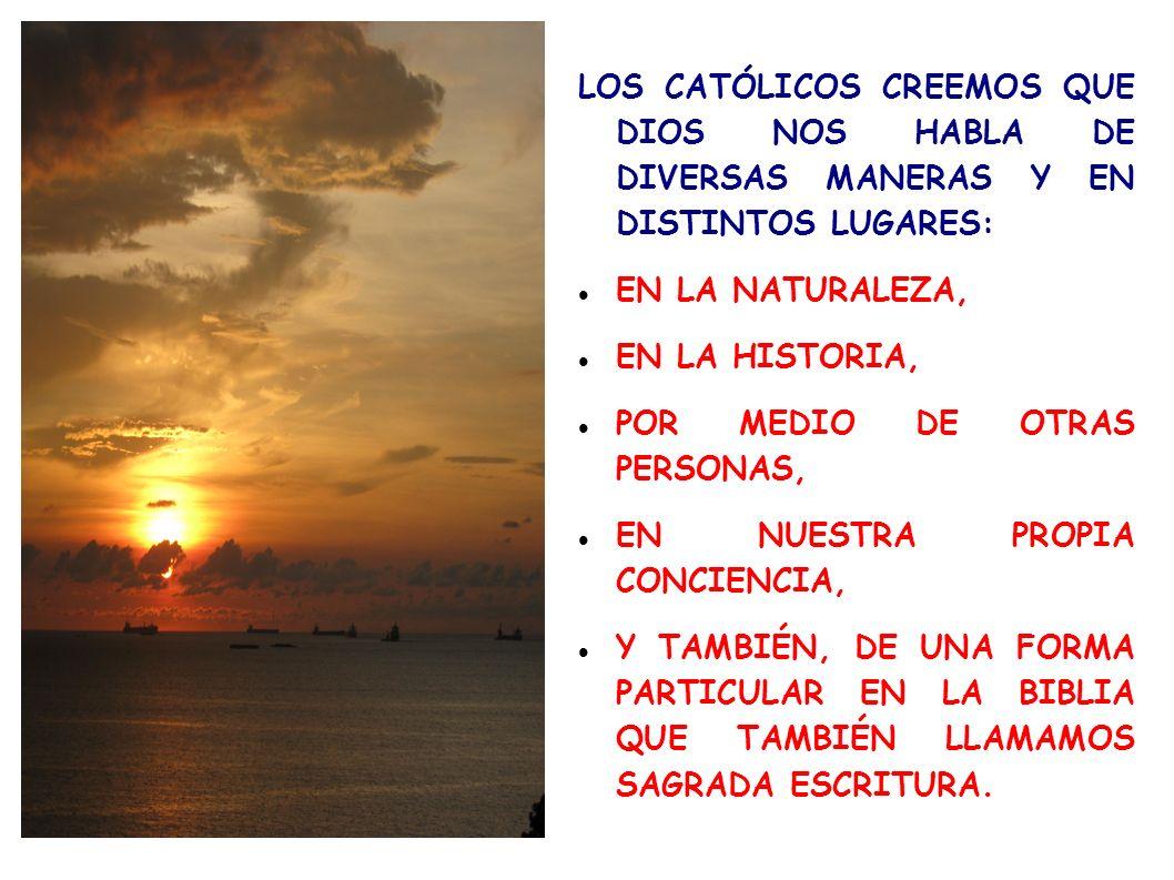 LOS CATÓLICOS CREEMOS QUE DIOS NOS HABLA DE DIVERSAS MANERAS Y EN DISTINTOS LUGARES: EN LA NATURALEZA, EN LA HISTORIA, POR MEDIO DE OTRAS PERSONAS, EN