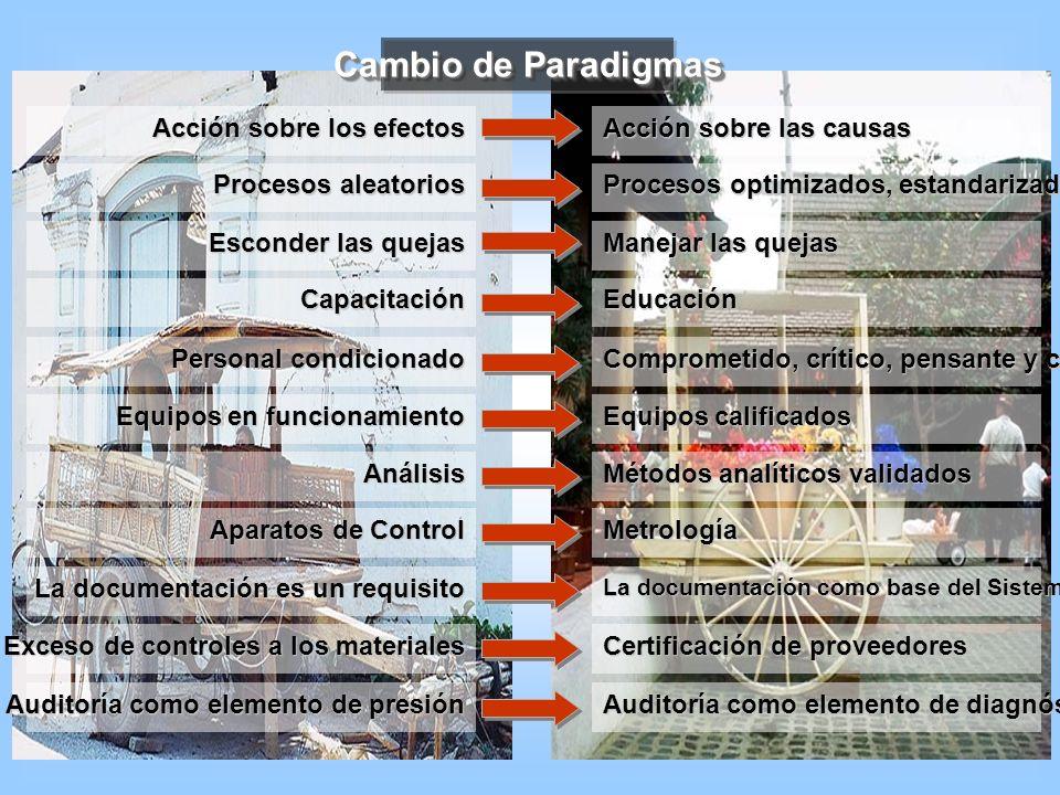 Cambio de Paradigmas Acción sobre los efectos Acción sobre las causas Procesos aleatorios Procesos optimizados, estandarizados, validados Esconder las