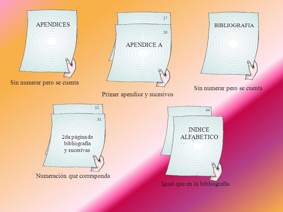 PORTADA Sin número, pero se cuenta para numerar las páginas Número romano en minúscula iv iii INDICE vi v SINOPSIS INTRODUCCION 1 Número arábigo Prime