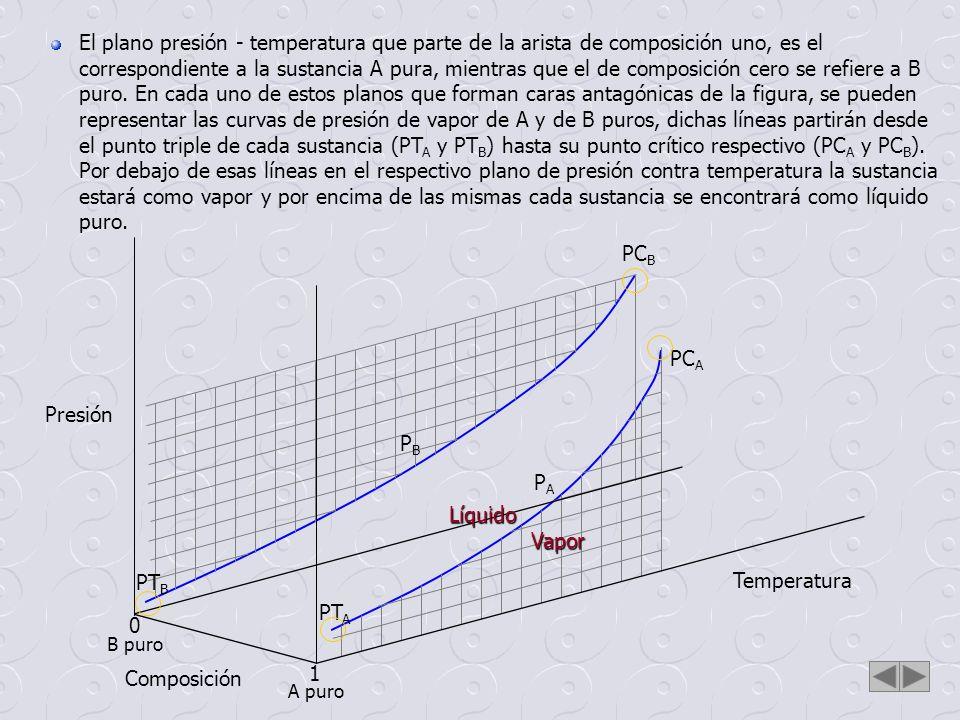 Temperatura Composición Presión 0 1 PT A PT B PC A PC B PAPA PBPB Una superficie doble extendida desde una curva de presión de vapor a la otra, formará un espacio en el cual estarán representadas las diferentes mezclas posibles de A y B (desde x = 0 hasta x = 1), las cuales estarán en equilibrio líquido vapor.