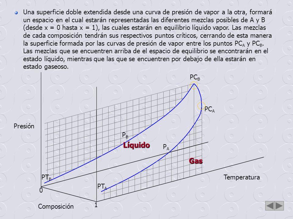 Temperatura Composición Presión 0 1 PT A PT B PC A PC B PAPA PBPB Si se traza un plano paralelo a cualquier cara del poliedro, por ejemplo al plano temperatura - composición, la propiedad excluída, en este caso la presión, será constante a través de toda la superficie del plano trazado, y su valor dependerá de dónde corta el plano su eje.