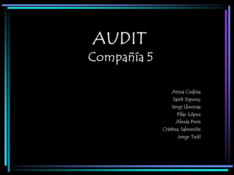 AUDIT Compañía 5 Anna Codina Santi Espuny Sergi Lloveras Pilar López Alexia Peris Cristina Salmerón Jorge Tuñí