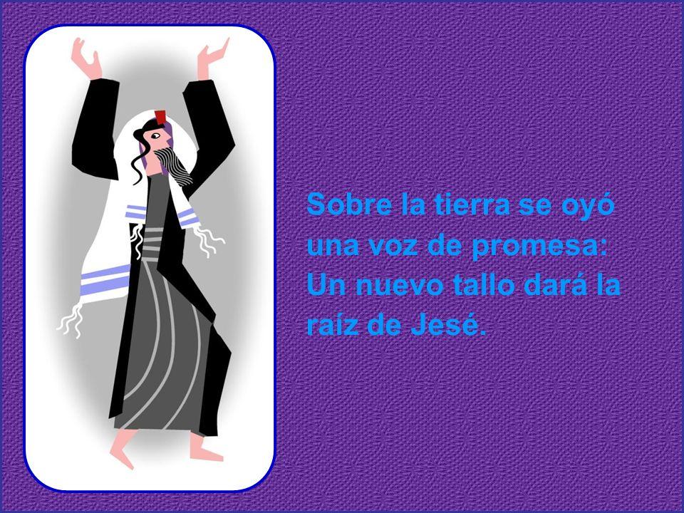 Ven, Señor, no tardes más, que sin ti no hay salvación.