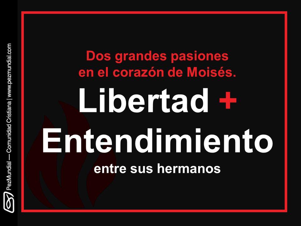 Dos grandes pasiones en el corazón de Moisés. Libertad + Entendimiento entre sus hermanos