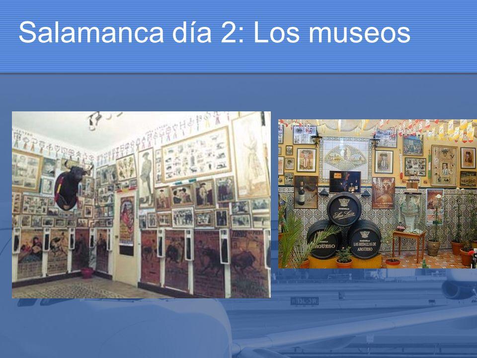 Salamanca día 2: Los museos