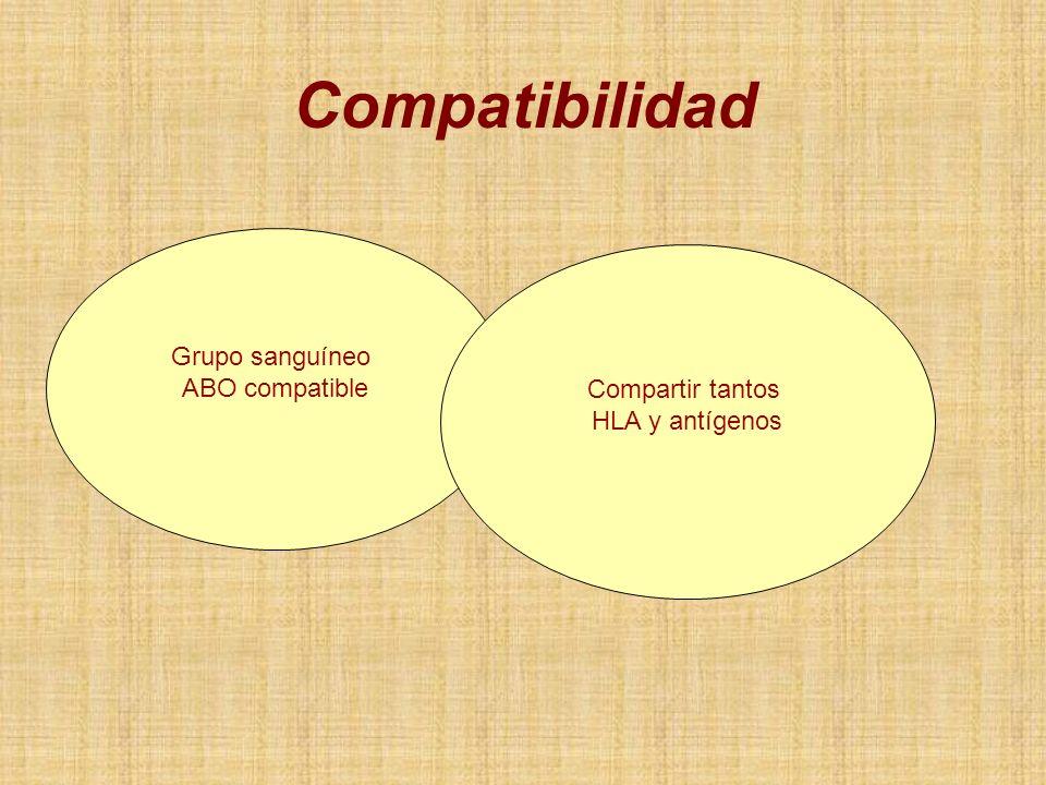 Grupo sanguíneo ABO compatible Compartir tantos HLA y antígenos Compatibilidad