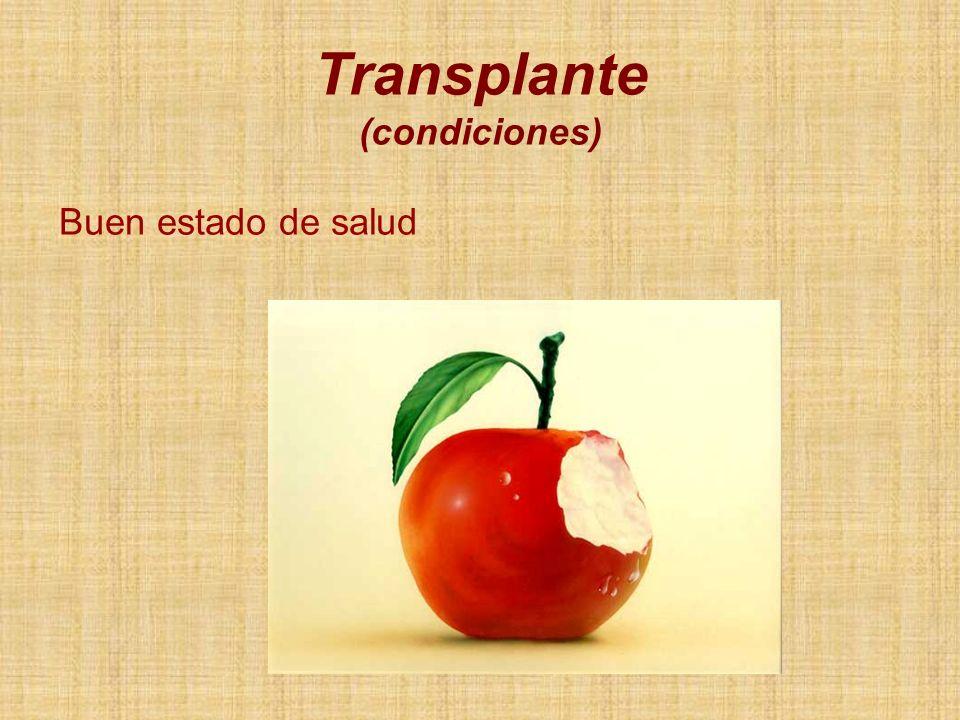 Buen estado de salud Transplante (condiciones)