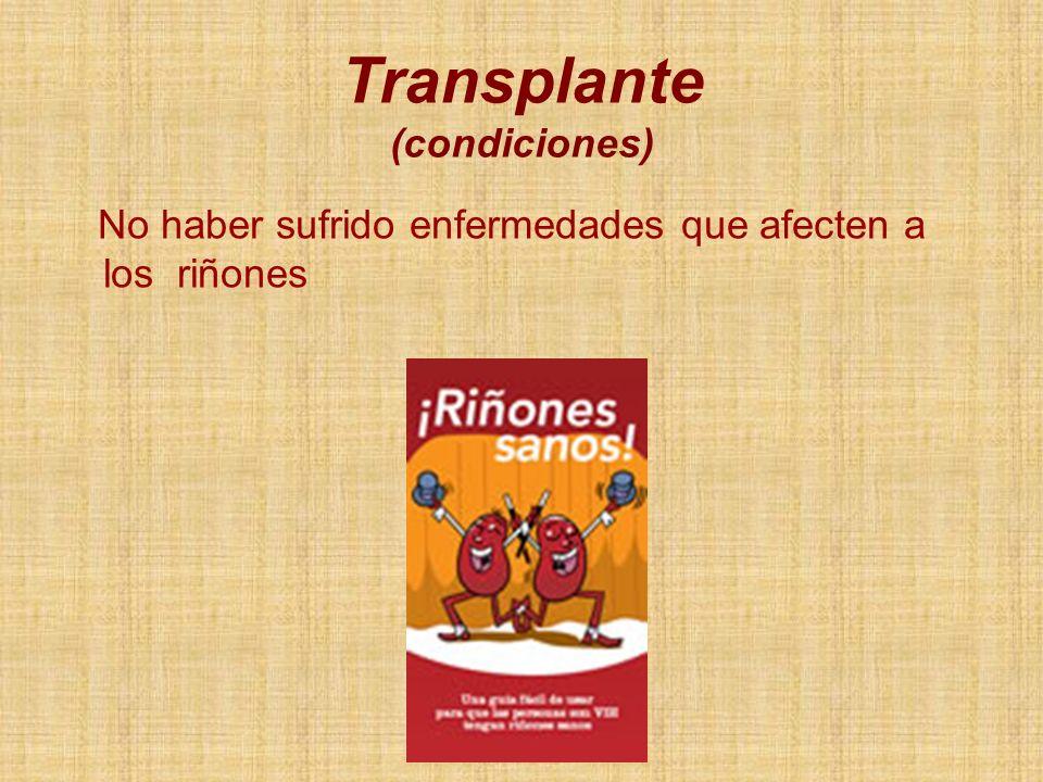 No haber sufrido enfermedades que afecten a los riñones Transplante (condiciones)