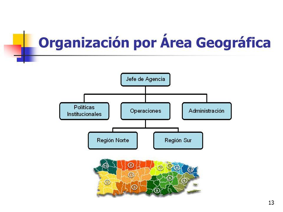 13 Organización por Área Geográfica