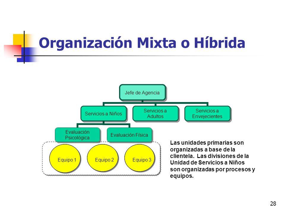 28 Organización Mixta o Híbrida Equipo 1 Equipo 2Equipo 3 Las unidades primarias son organizadas a base de la clientela. Las divisiones de la Unidad d