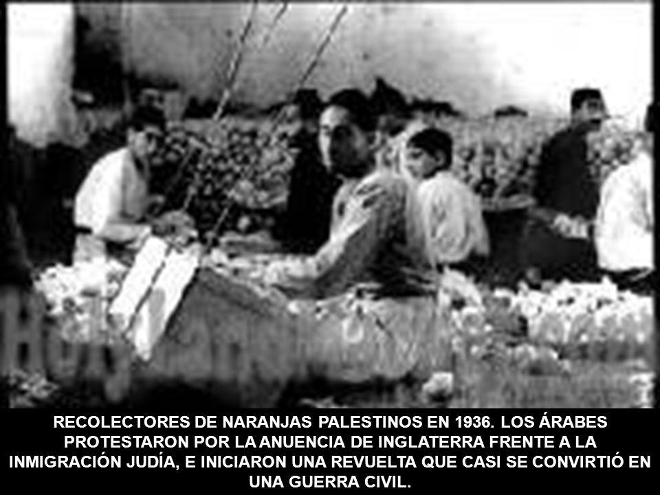 RECOLECTORES DE NARANJAS PALESTINOS EN 1936. LOS ÁRABES PROTESTARON POR LA ANUENCIA DE INGLATERRA FRENTE A LA INMIGRACIÓN JUDÍA, E INICIARON UNA REVUE