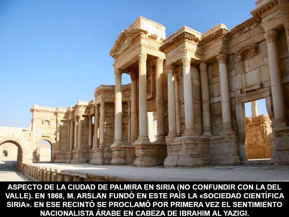 ASPECTO DE LA CIUDAD DE PALMIRA EN SIRIA (NO CONFUNDIR CON LA DEL VALLE). EN 1868, M. ARSLAN FUNDÓ EN ESTE PAÍS LA «SOCIEDAD CIENTÍFICA SIRIA». EN ESE