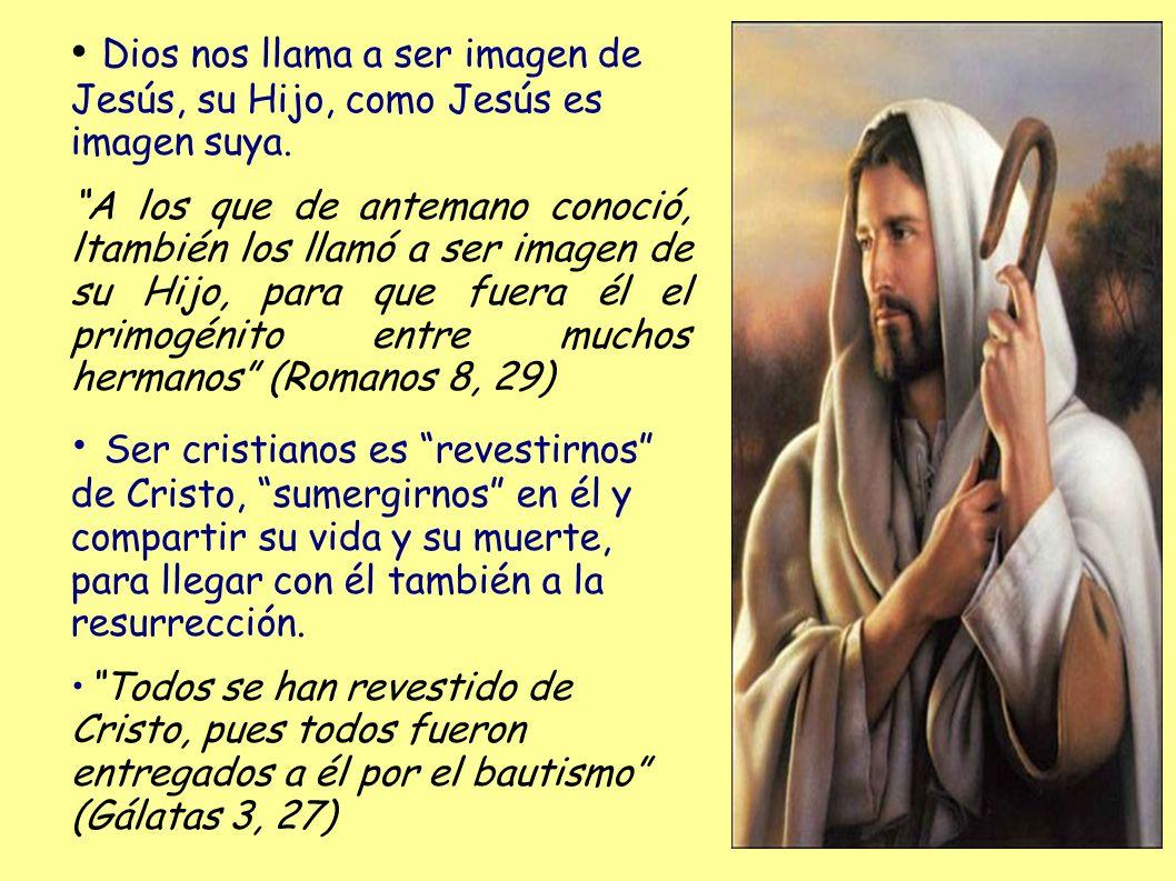 Dios nos llama a ser imagen de Jesús, su Hijo, como Jesús es imagen suya. A los que de antemano conoció, ltambién los llamó a ser imagen de su Hijo, p