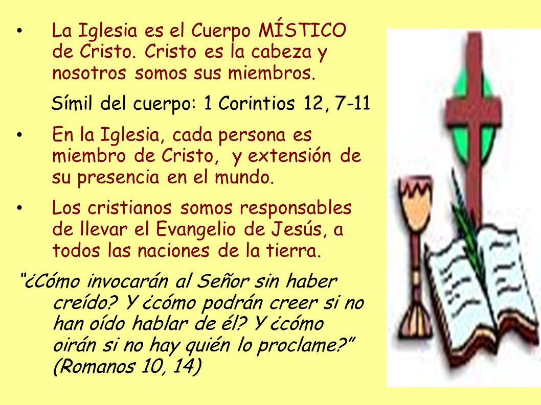 La Iglesia es el Cuerpo MÍSTICO de Cristo. Cristo es la cabeza y nosotros somos sus miembros. Símil del cuerpo: 1 Corintios 12, 7-11 En la Iglesia, ca