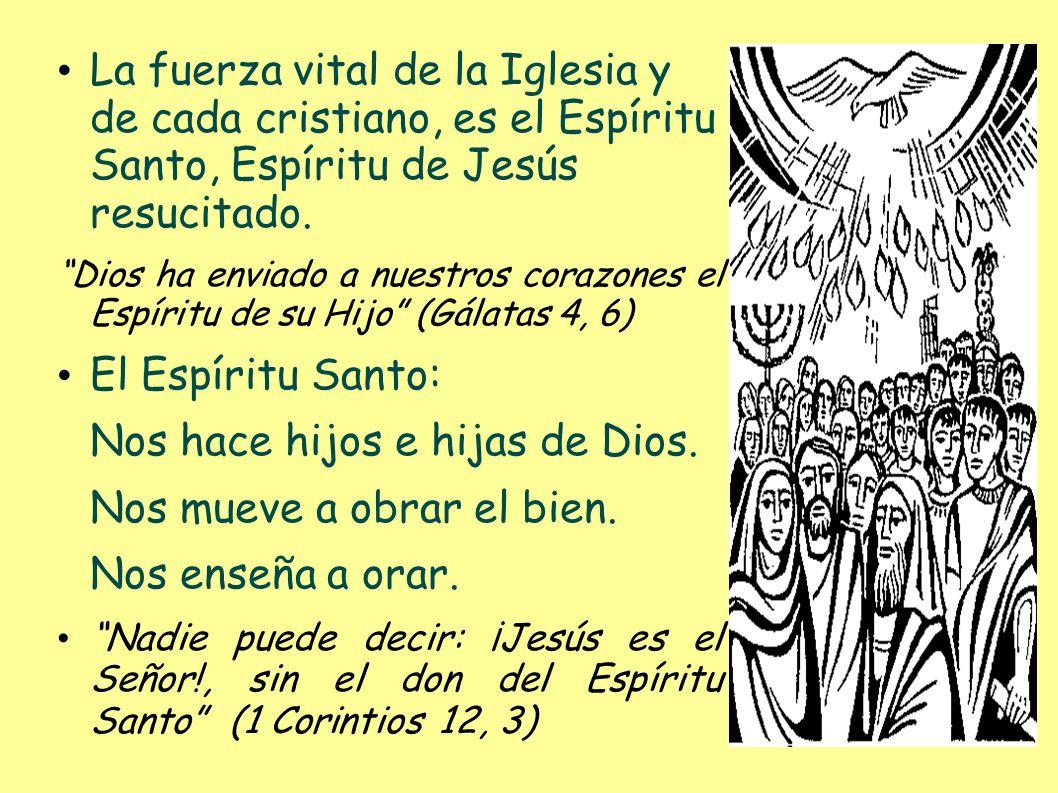 La fuerza vital de la Iglesia y de cada cristiano, es el Espíritu Santo, Espíritu de Jesús resucitado. Dios ha enviado a nuestros corazones el Espírit