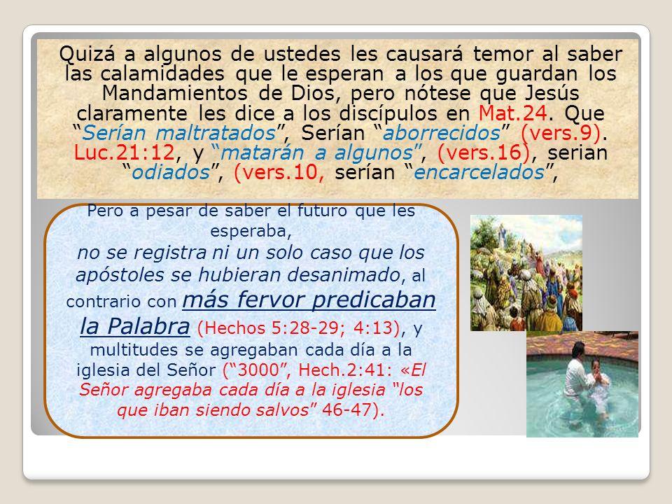 Quizá a algunos de ustedes les causará temor al saber las calamidades que le esperan a los que guardan los Mandamientos de Dios, pero nótese que Jesús
